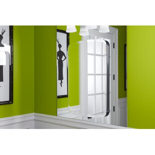 Bancroft 20 W x 31 H Aluminum Single-Door Medicine Cabinet with Mirrored Door Kohler