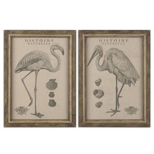 Natural History 2 Piece Framed Painting Print Set by Uttermost