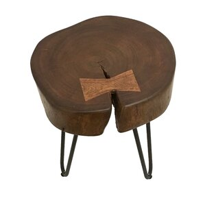 Paita Wood End Table by Light & Living