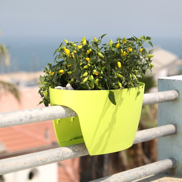Plastic Rail Planter (Set of 2) by Greenbo Home and Garden
