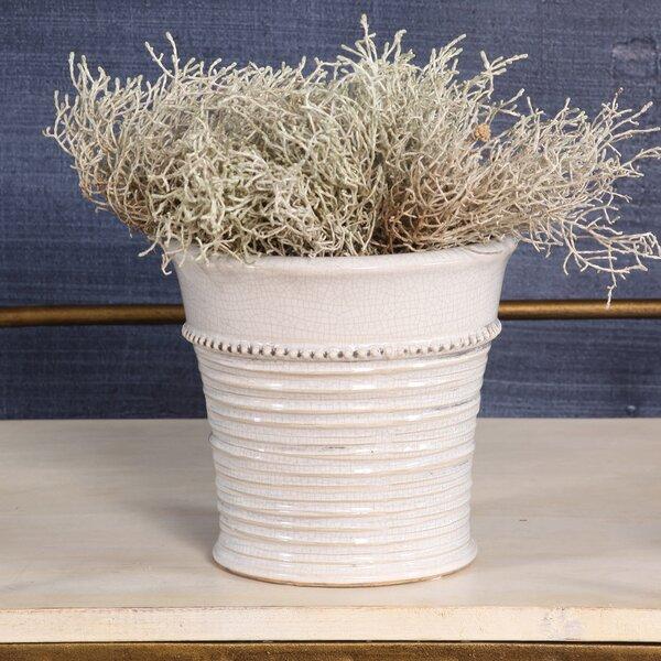 Koret Ceramic Pot Planter by World Menagerie