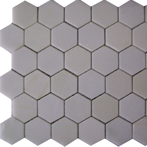 Epoch Architectural Surfaces Thassos Hexagon 2 x 2 Marble Mosaic Tile in White by Epoch Architectural Surfaces