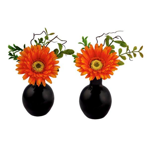 Gerbera Daisy Arrangement in Glass Vase (Set of 2) by Red Vanilla