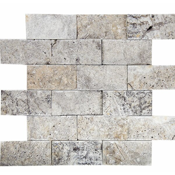 Split Face 2 x 4 Stone Mosaic Tile in Silver by Parvatile