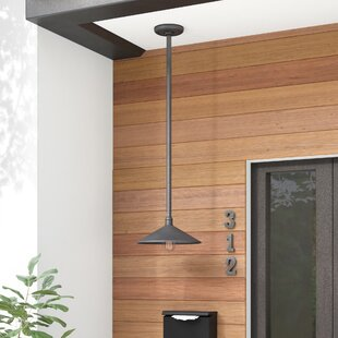 Compare & Buy Shalena 1-Light Outdoor Pendant By 17 Stories