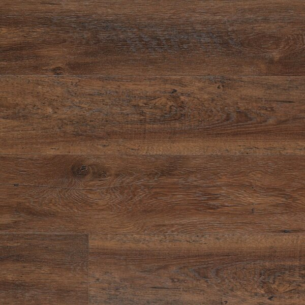 Dominion 6.13 x 54.34 x 12mm Chestnut Laminate Flooring in Barrel Chestnut by Quick-Step