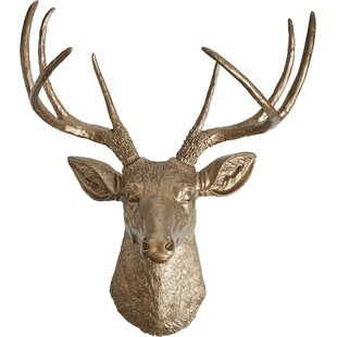 Stuffed Animal Head Wall Decor | Wayfair