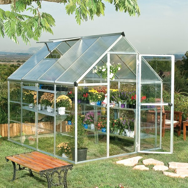 Shearson 6 Ft. W x 8 Ft. D Greenhouse by Darby Hom