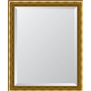 Melissa Van Hise Gold Ornate Wall Mirror