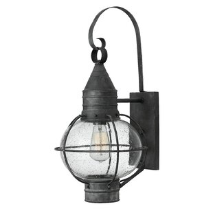 Find Jolie 1-Light Outdoor Wall Lantern By Longshore Tides