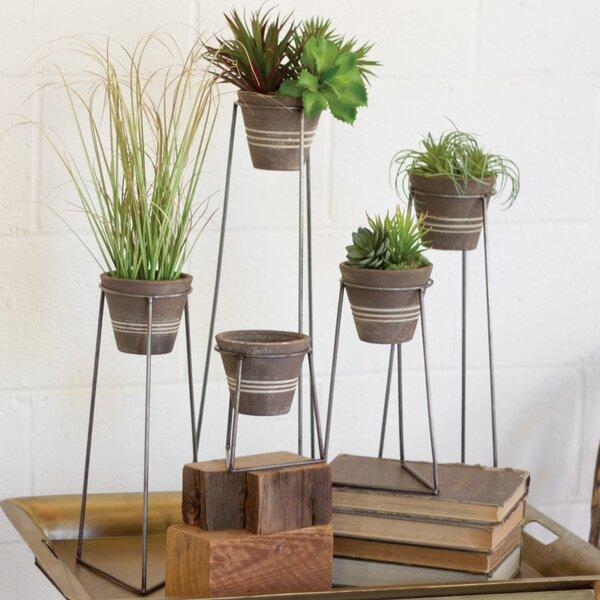 Zanickrowsky 5 Piece Clay/Metal Pot Planter Set by Gracie Oaks