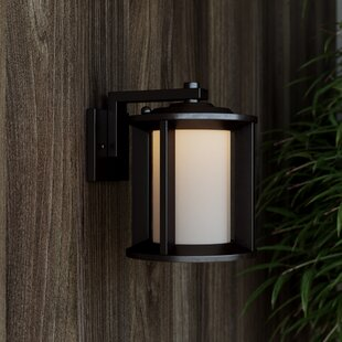 Compare Loeffler 1-Light Outdoor Wall Lantern By Brayden Studio