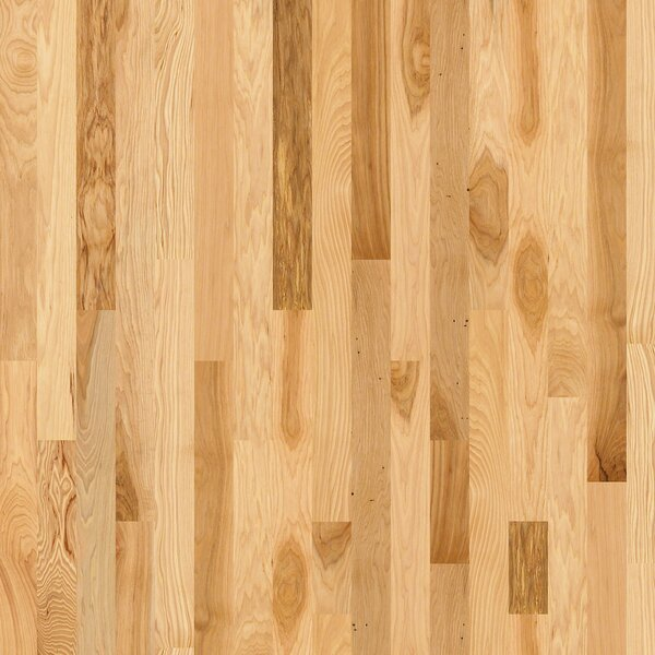 Cambridge Hickory 3-1/4 Solid Hickory Hardwood Flooring in Lufkin by Shaw Floors