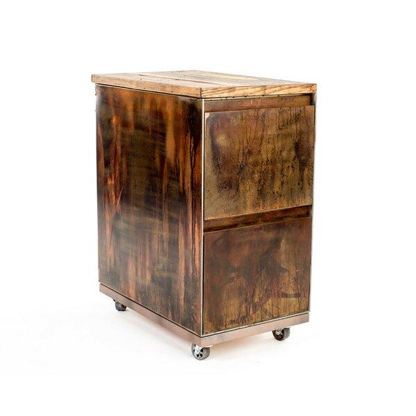 Whitman 2-Drawer Mobile Vintage File Cabinet