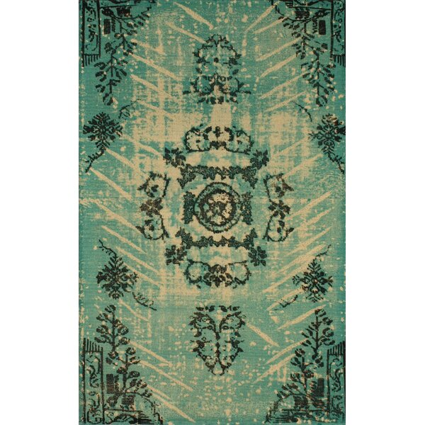 Natural Kolor Hand-Woven Turquoise Area Rug by nuLOOM
