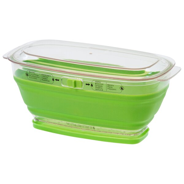 Collapsible Produce Keeper Food Storage Container by Progressive International