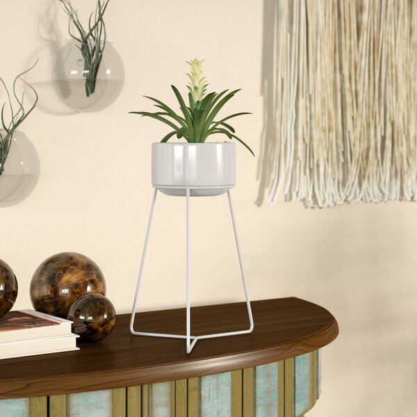 Lola Terracotta Pot Planter With Stand by Bungalow Rose