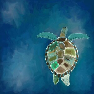'Swimming Sea Turtle' by Cathy Walters Painting Print on Canvas by GreenBox Art