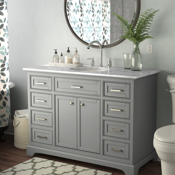 Darry 48 Single Bathroom Vanity Set by Darby Home Co