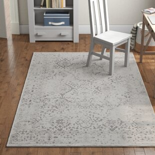 Exceptionnel Washable Accent Rugs | Wayfair