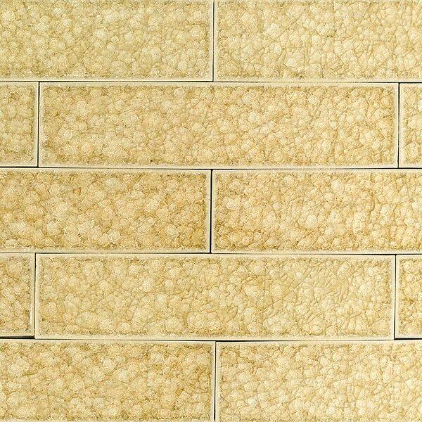 Roman Selection 2 x 8 Glass Subway Tile in Raw Ginger by Splashback Tile