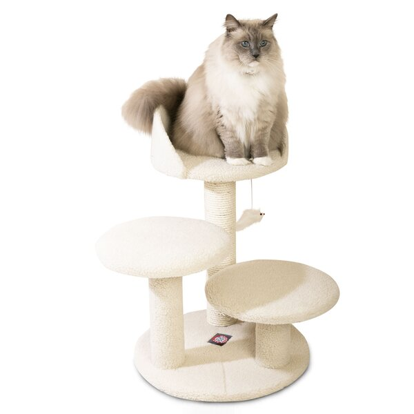 27 Bungalow Sherpa Cat Tree by Majestic Pet Produc
