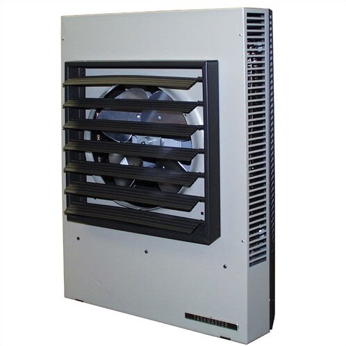 307,100 BTU Wall Insert Electric Fan Heater with Thermostat by TPI