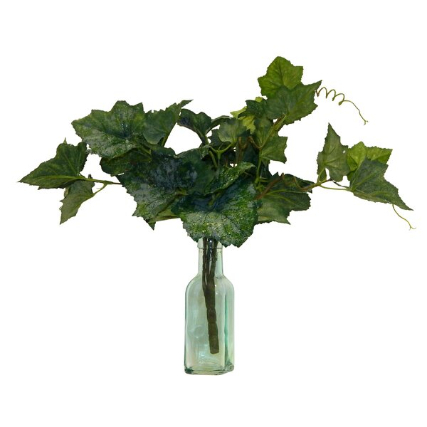 Fresh Cut Grapevine Glass Floral Arrangement in Vase by Bay Isle Home