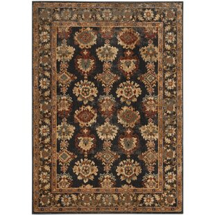 Compare prices LoweBrown/Black Area Rug By Charlton Home