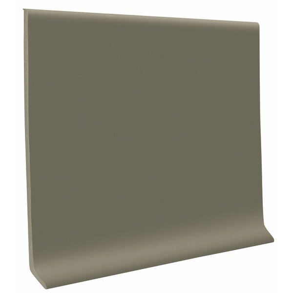 0.13 x 48 x 4 Cove Molding in Dolphin (Set of 30) by ROPPE