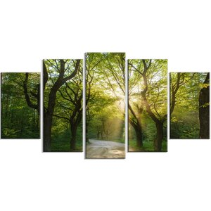'Evening in Green Forest' Photographic Print Multi-Piece Image on Canvas by Design Art