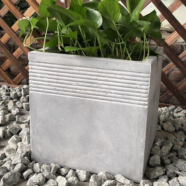Geiger Planter Box by Williston Forge