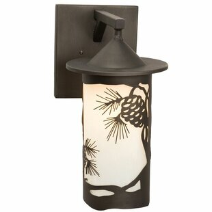 Order Pasadena 1-Light Outdoor Wall Lantern By Steel Partners