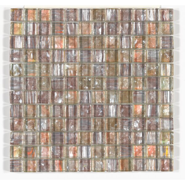 Accent Statements 12 x 12 Glass Mosaic Tile in Amber Shell by Mohawk Flooring