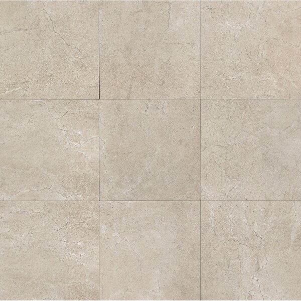 El Dorado 24 x 24 Porcelain Field Tile in Rock by Grayson Martin