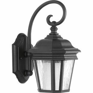 Order Triplehorn 1-Light Outdoor Wall Lantern By Alcott Hill