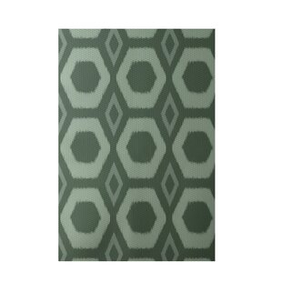 Reviews Geometric Hand-Woven Green Indoor/Outdoor Area Rug By e By  design