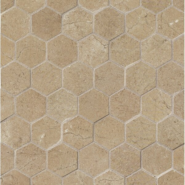 El Dorado 2 x 2 Porcelain Hexagon Mosaic Tile in Starfish by Grayson Martin