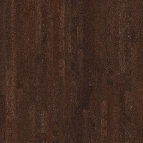 3-1/4 Solid Oak Hardwood Flooring in Mocha by Welles Hardwood