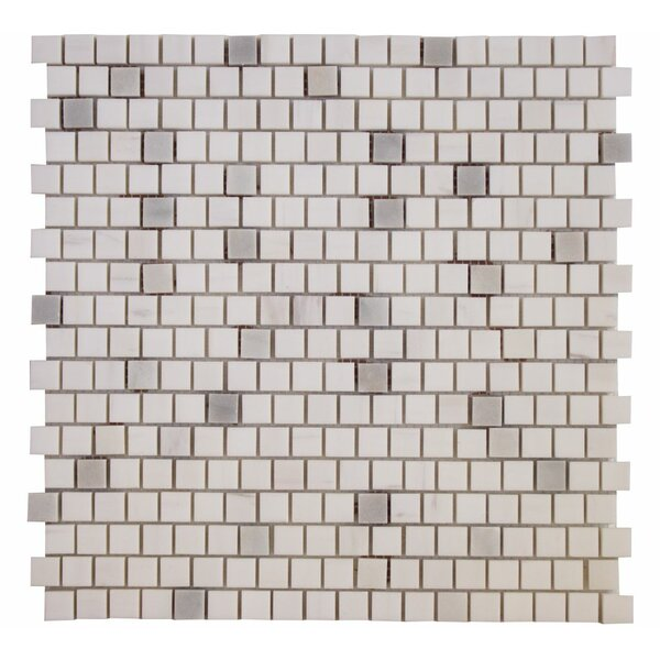 0.63 x 0.63 Marble Mosaic Tile in Dolomite Rain by Ephesus Stones
