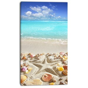 'Caribbean Sea Starfish' Photographic Print on Wrapped Canvas by Design Art