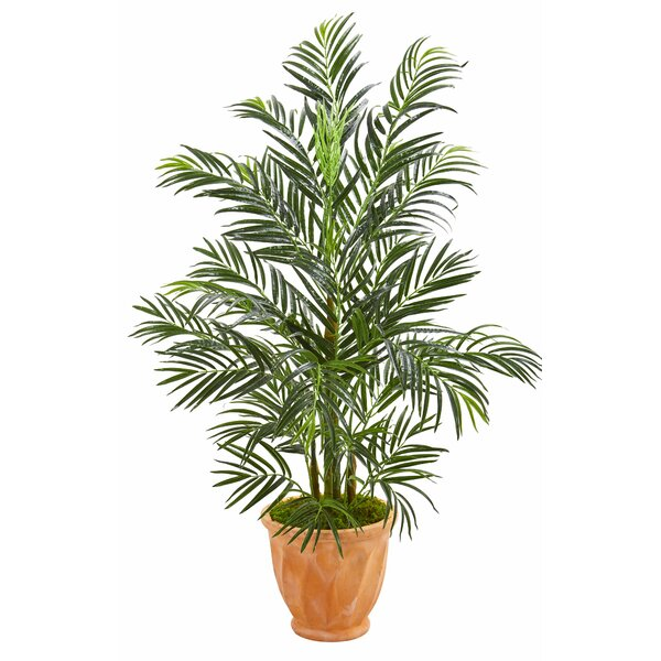 Areca Floor Palm Tree in Planter by Bay Isle Home