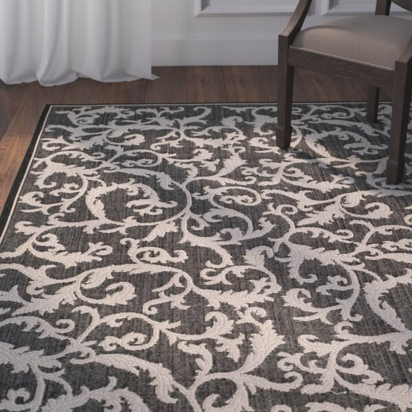Beasley All Over Ivy Black Indoor/Outdoor Area Rug by Astoria Grand