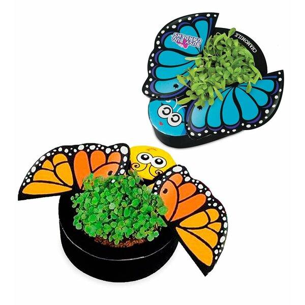 Busy Butterflies 2-Piece Pot Planter Set by HearthSong