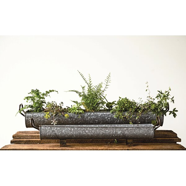 Dionisio Rectangle Footed Container 2 Piece Plant Stand Set by Williston Forge