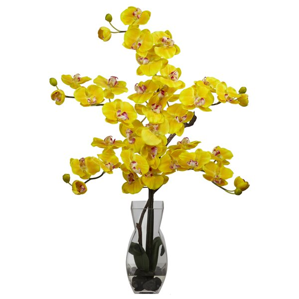 Phalaenopsis with Vase Silk Flower Flowers in Yellow by Nearly Natural