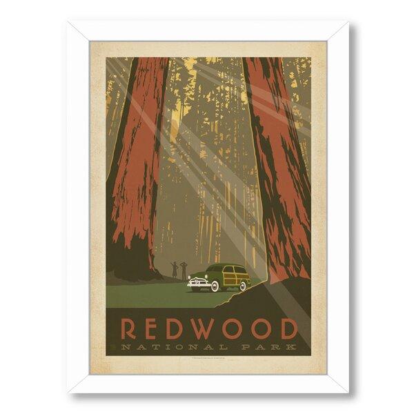 Redwood National Park Framed Vintage Advertisement by East Urban Home