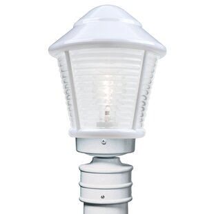 Inexpensive Donnie 1-Light Frosted Glass Lantern Head By Latitude Run