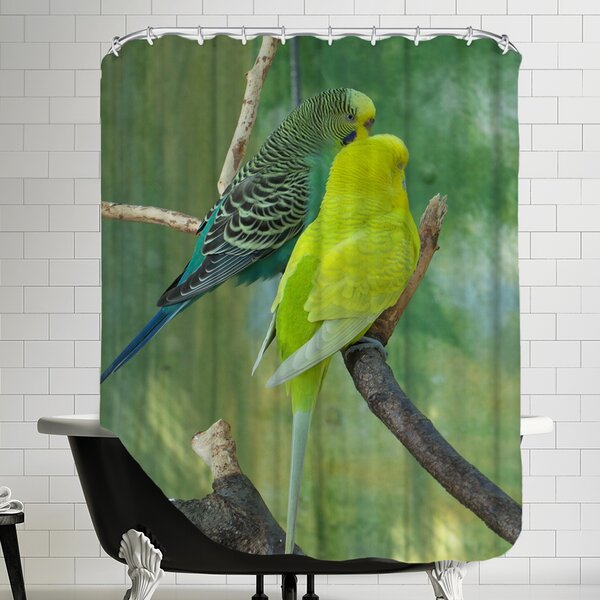 Wildlife Budgie Bird Parrot Shower Curtain by East Urban Home