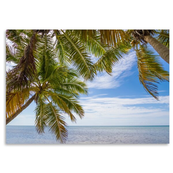 Florida Lovely Oceanside Photographic Print by East Urban Home